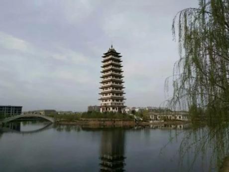 临漳七子湖的春天