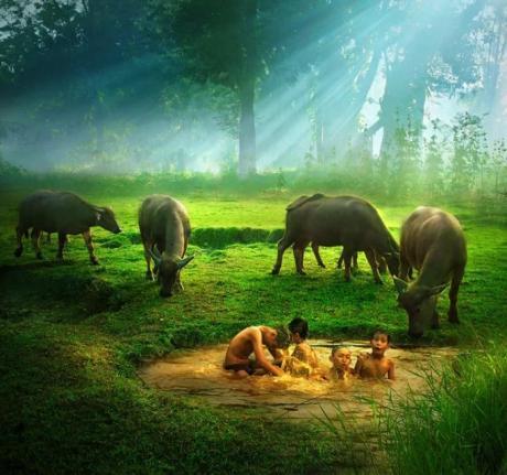 从绿野中走出的歌者——序秦勇散文集《绿野短笛》